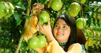 Du lịch miệt vườn Phong Điền Cần Thơ