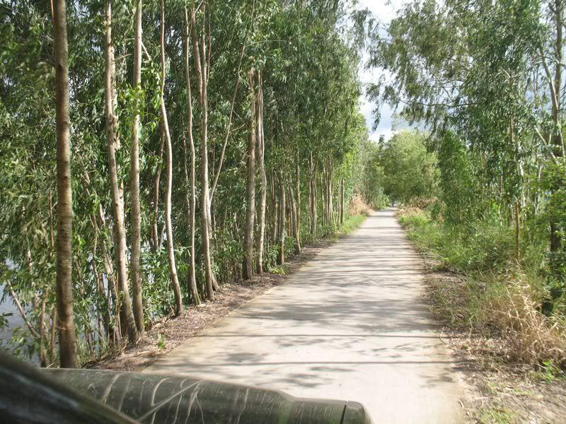 Khu du lịch sinh thái Gáo Giồng Đồng Tháp