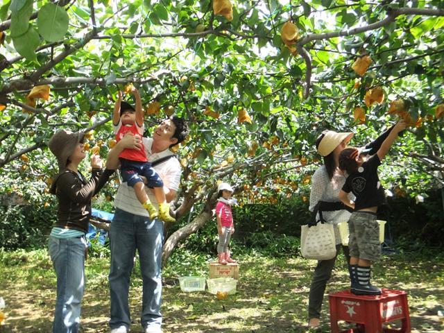Các điểm tham quan du lịch nổi tiếng Tiền Giang
