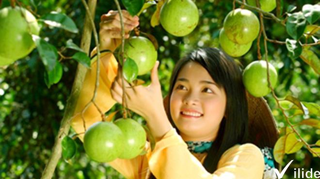 Vườn cây ăn trái miền Tây cực ngon