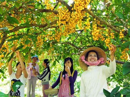 Miệt vườn Mỹ Khánh