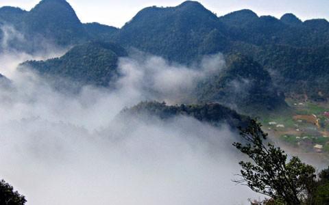 Đỉnh mây bạc vườn quốc gia Cúc Phương