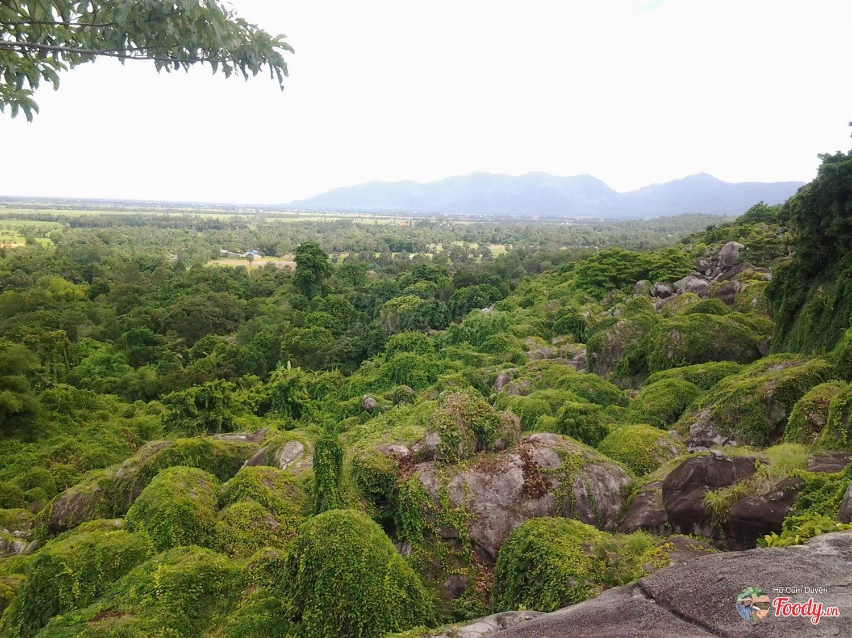 Cảnh đẹp nhìn từ đồi Tức Rụp