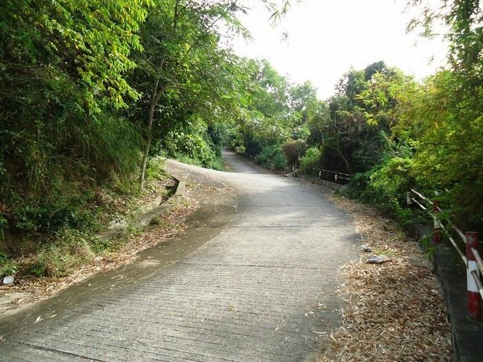 Con đường dẫn lên núi Ba Thê