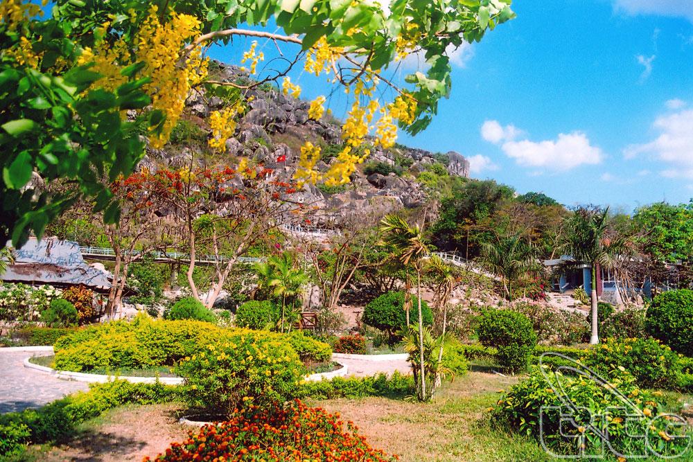 Vườn hoa đồi Tức Rụp với hàng trăm loại hoa.